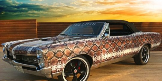 GTO wrapped in snakeskin printed on oracal 3551RA